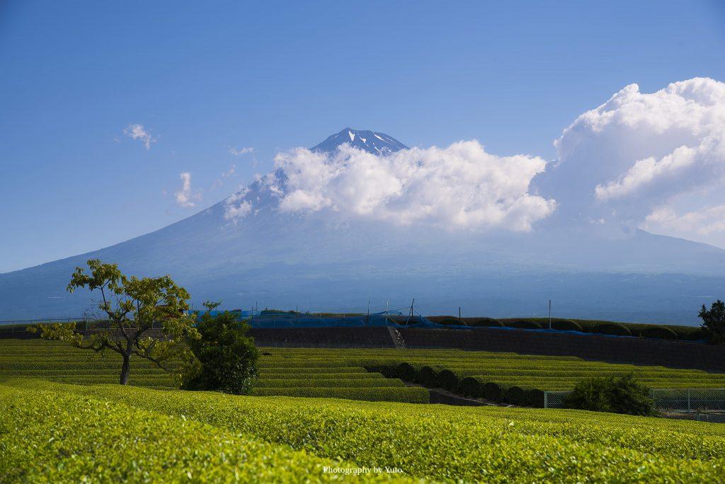 岩本山丘陵(静岡県富士市)