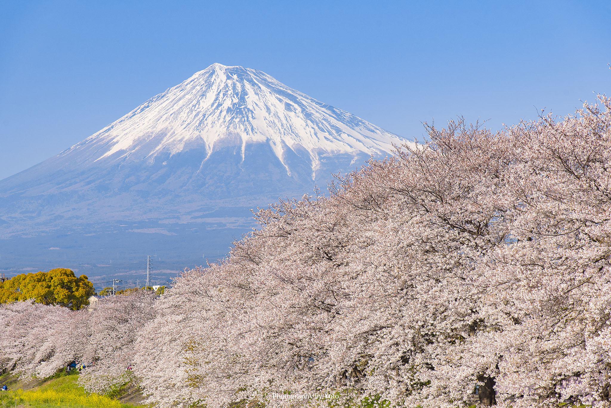 静岡県の写真撮影スポット(27箇所)