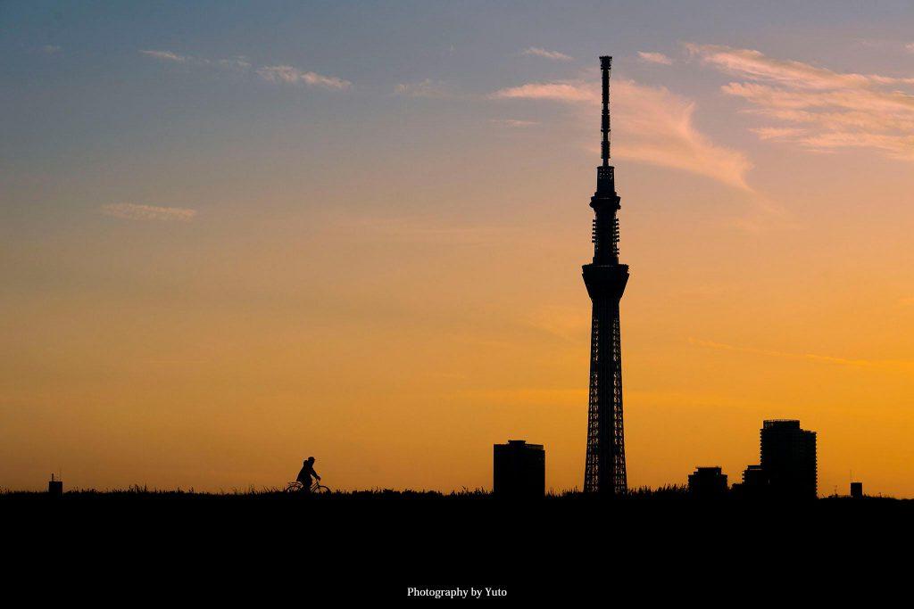 東京都葛飾区 荒川土手 2019/2/18