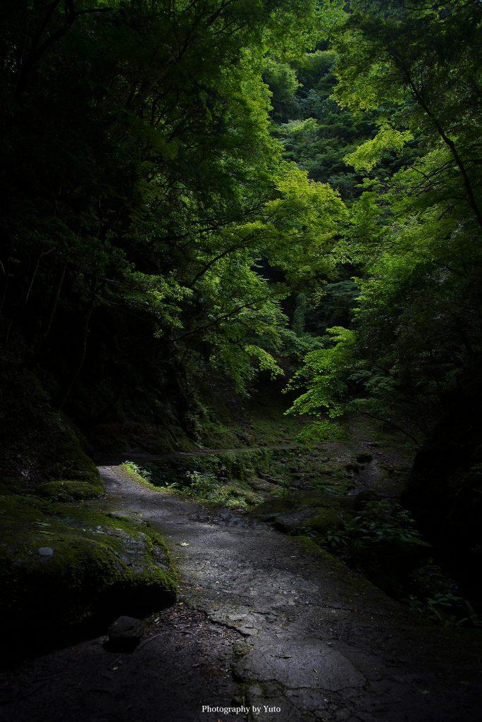 三重県名張市 赤目四十八滝 縋藤滝 2017/7/1