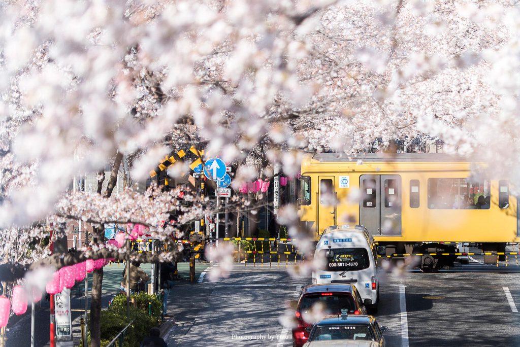 東京都中野区 新井薬師前2号踏切 2019/4/3