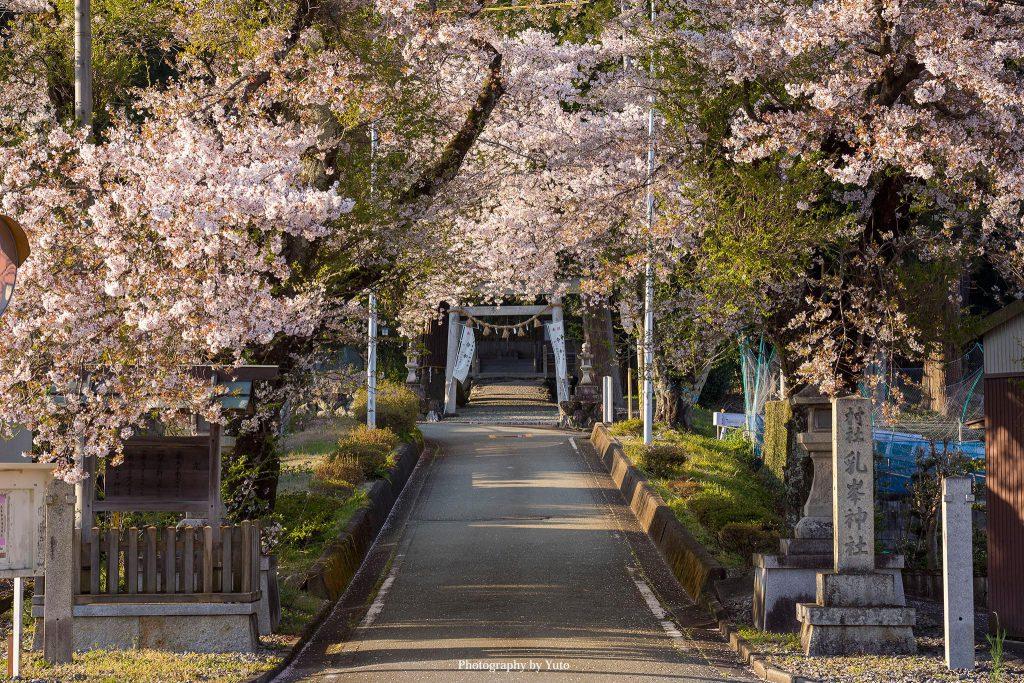 三重県松阪市 乳峯神社 2020/4/7