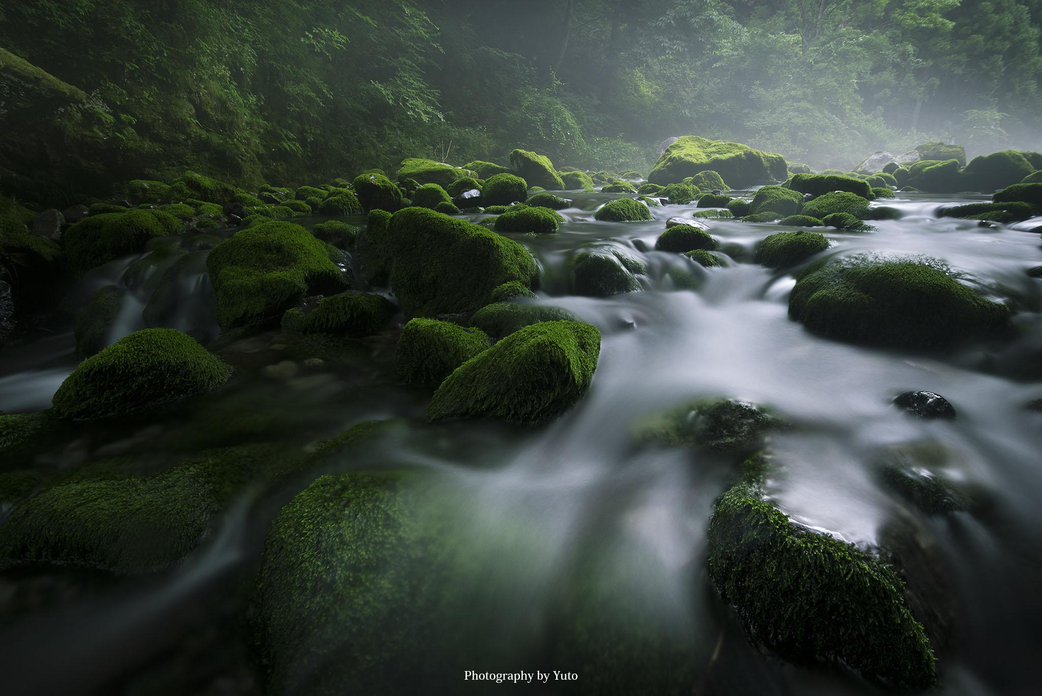 岐阜の円原川で新緑と光芒を撮ってきた