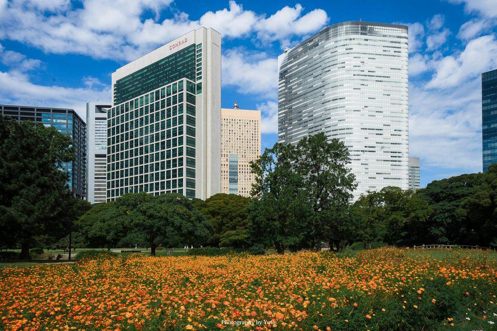 東京都中央区 浜離宮恩賜庭園 2019/9/25
