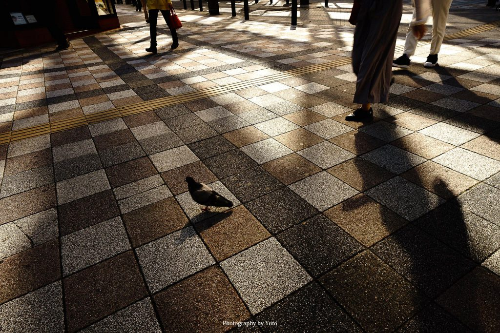 東京都豊島区 池袋 2019/11/5
