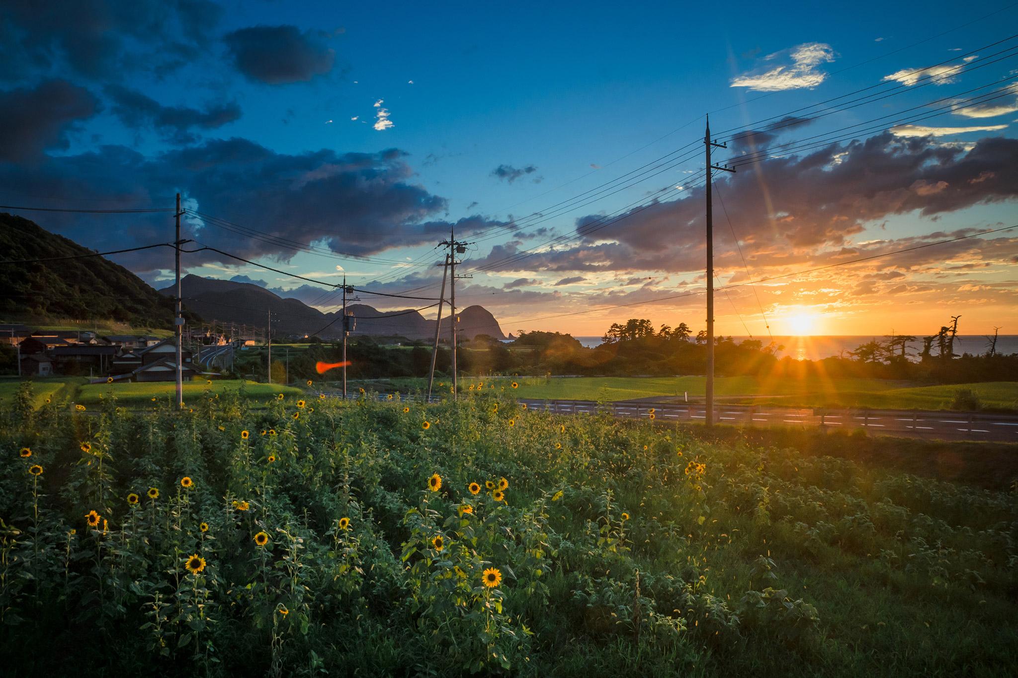 おすすめ写真集『夏は幻』Iskaさん 夏を感じる日常風景