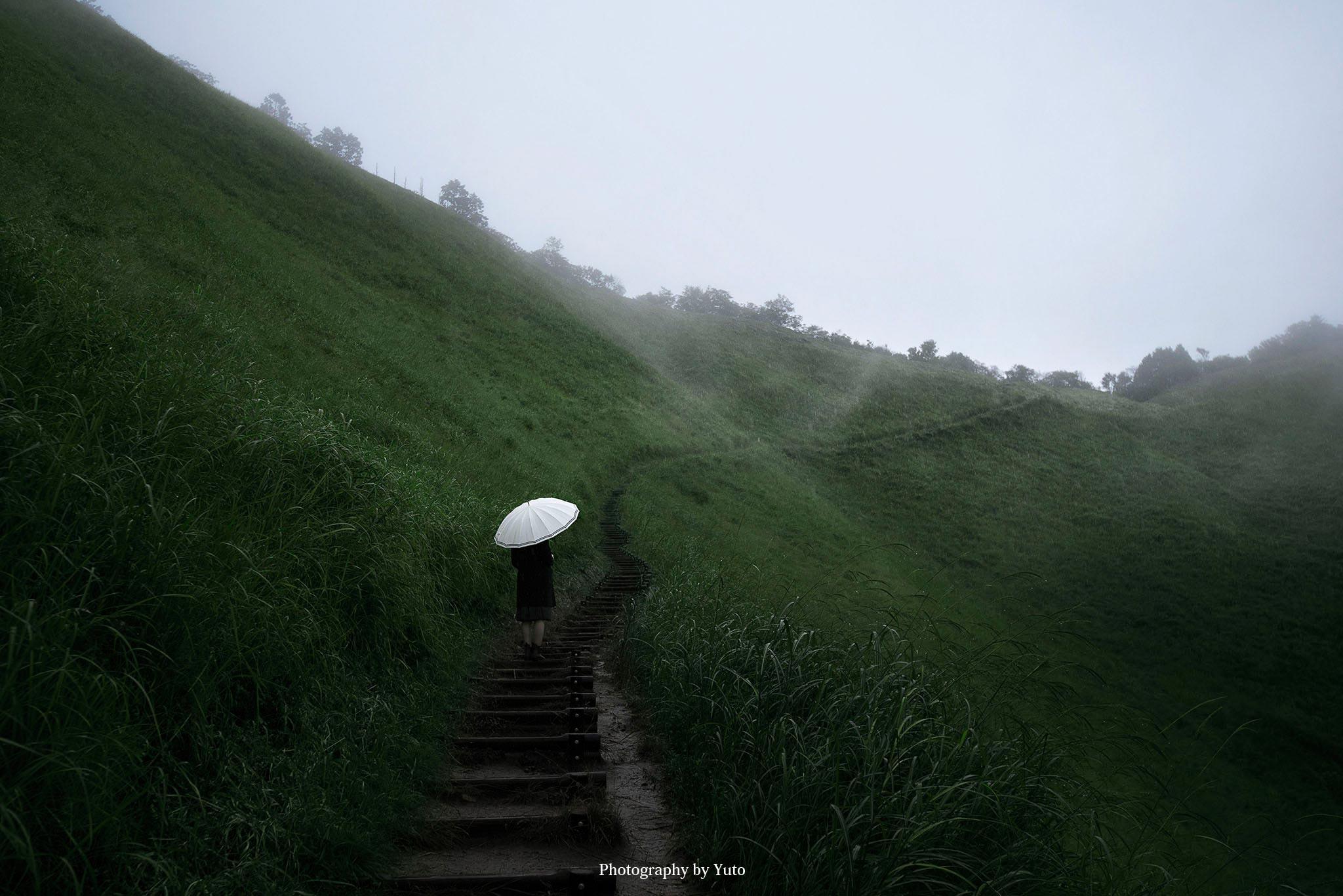 雨の日の曽爾高原を満喫してきた