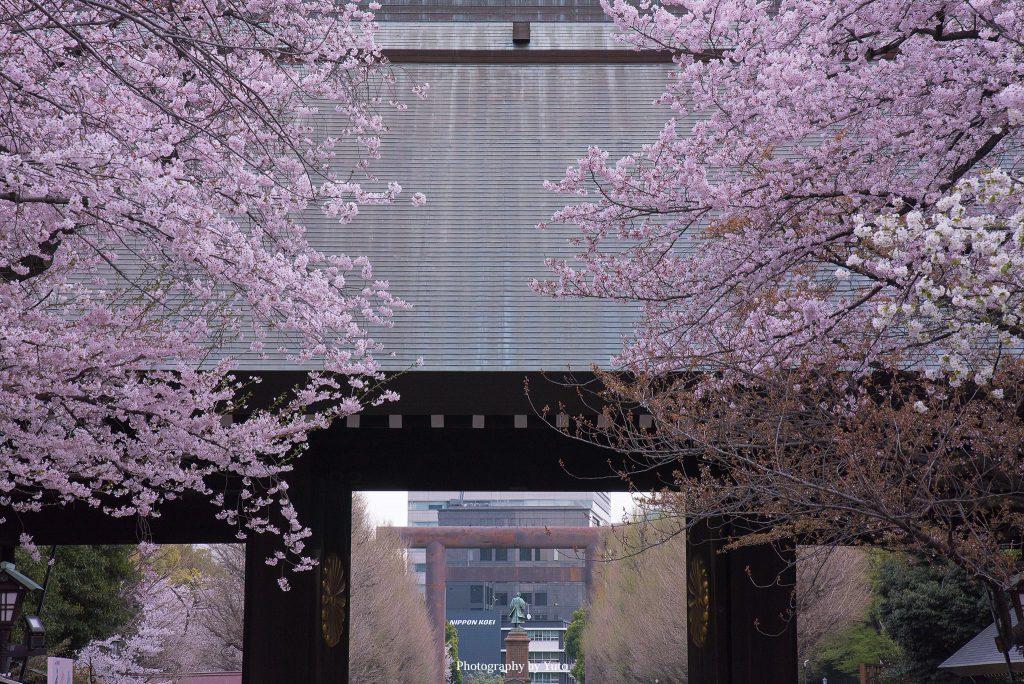 東京都千代田区 靖国神社 2016/4/5